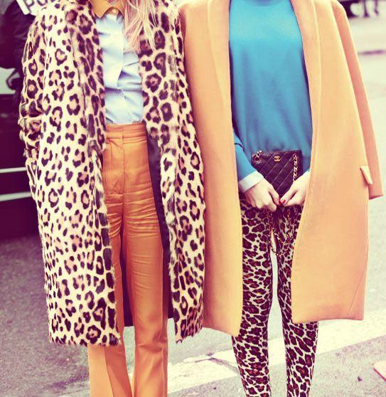 modadesnuda_camel_blue_leopardo